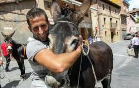 burro--
