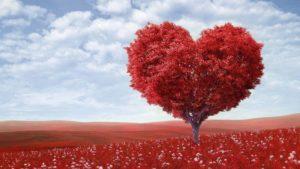 frases-de-amor-bonitas-y-originales-para-enamorar-y-conquistar