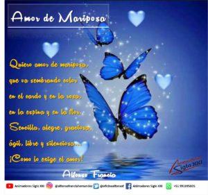 Amor d Mariposa